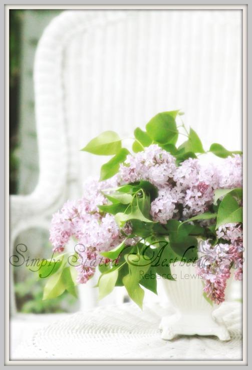 2011 vintage lilacs